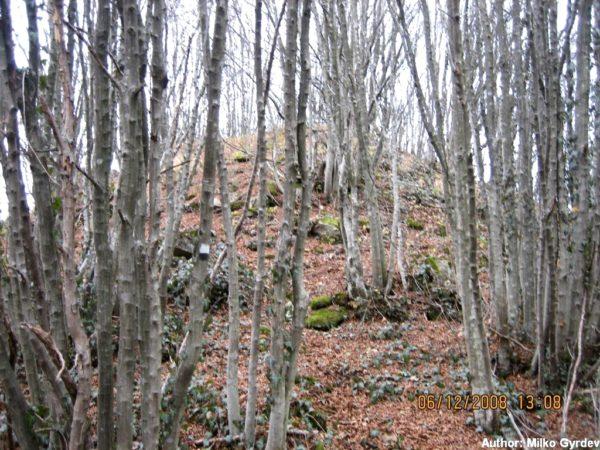 bulgarian castles krivgrad iztochna kula