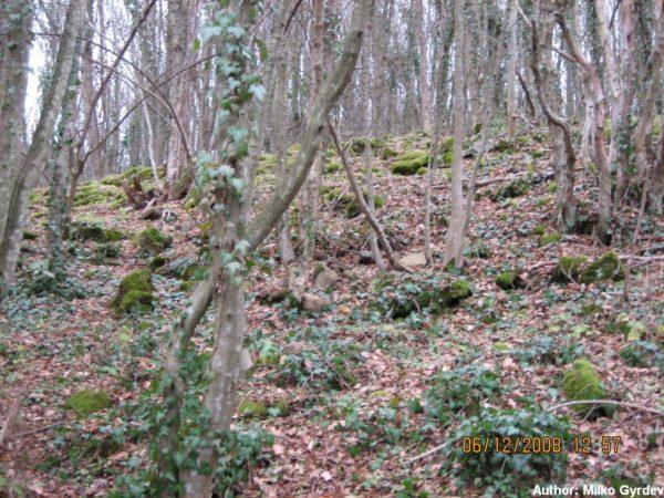 bulgarian castles krivgrad severna stena