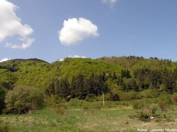 bulgarian castles shishmanovo kale 1