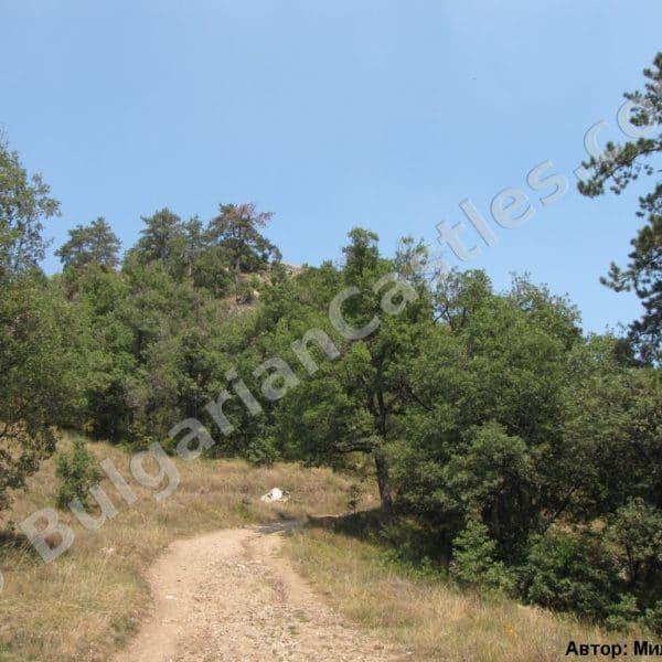 bulgarian castles tsepina 1