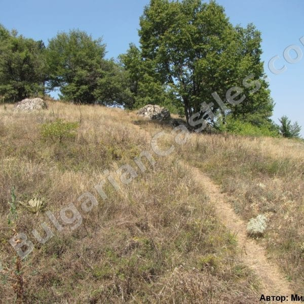 bulgarian castles tsepina 4